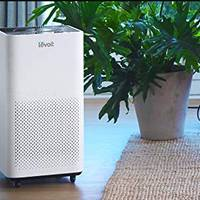 Levoit Air Purifiers Compared: LV-H134 vs. LV-H135